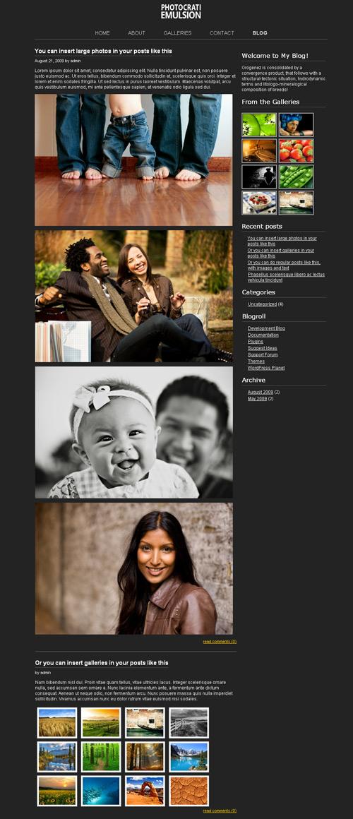 Wordpress - galerie dla fotografów